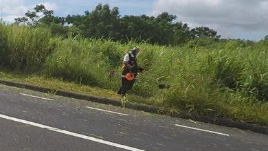 Photo of Quand les appareils pour couper l'herbe deviennent un danger pour les véhicules